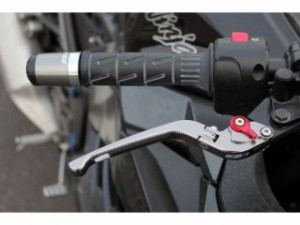 SSK CB1000R レバー 可倒式アジャストレバー 3Dタイプ クラッチ&ブレーキセット チタン シルバー
