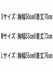 (ナイキ) NIKE/11/12インテル/アウェイ/半袖/2010FIFAクラブW杯優勝バッジ+コパイタリアバッジ付/419986-105