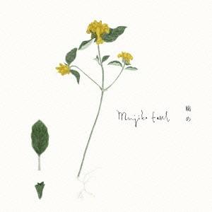 Mujika Easel/眺め 【CD】