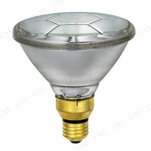 屋外ビームランプ150形集光 EBRS110V120W/N 屋外 ライト 家電 電化製品 照明器具 電球