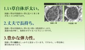 純国産 い草ラグ DXなでしこ (I) 約191×191cm カーペット マット 夏用 裏面不織布