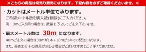パンチカーペット 防炎品 約幅180cm (1m単位) カット販売 リック吸着パンチ (R) 廊下敷き 床の保護 家庭用 日本製