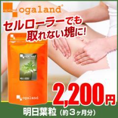明日葉粒(約3ヶ月分) 八丈島産 鹿児島県産 明日葉茶 ダイエット サプリメント ビタミン 健康食品 _JD _3K