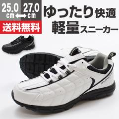即納 あす着 送料無料 スニーカー メンズ ローカット 靴 WILDNATURE 2911