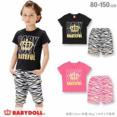 NEW ゼブラ セットアップ Tシャツ/ハーフパンツ ベビーサイズ キッズ ジュニア ベビードール 子供服-0563K(150cmあり)