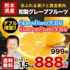和製グレープフルーツ1.5kg(河内晩柑)送料無料★2セット購入で1セット分増量★訳あり 速攻出荷《3-5営業日以内に出荷(土日祝日除く)》