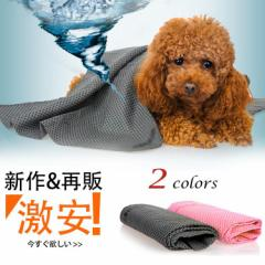 お風呂 タオル 超吸水タオル ペットタオル 犬タオル 猫タオル