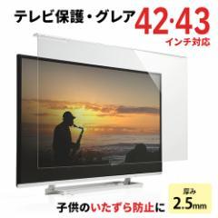 【送料無料】液晶テレビ 保護パネル 42インチ 43インチ対応 アクリル製 保護カバー [200-CRT014]