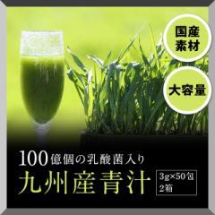 青汁 粉末ドリンク 100億個の乳酸菌入り九州産青...
