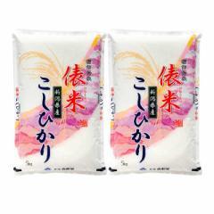 米 お米 精米  新潟県産 こしひかり 10kg(5kg×2袋)令和3年産