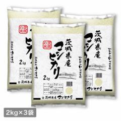 米 お米 精米 6kg(2kg×3) こしひかり  茨城県産 令和3年産