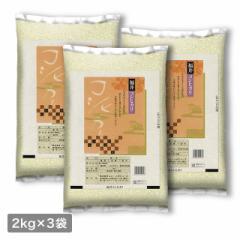 米 お米 精米 6kg(2kg×3) コシヒカリ 福井県産 令和3年産