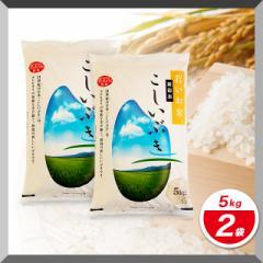 米 お米 精米 10kg(5kg×2) 新潟県産 こしいぶき 令和3年産