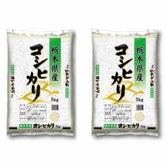 米 お米 令和3年産 精米 10kg(5kg×2) こしひかり 栃木県産