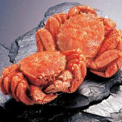 冷凍北海道産毛がに 総重量720g(2尾) 毛蟹 毛ガニ 毛がに かに 蟹 北海道