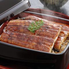 静岡焼きうなぎ 1尾1パック(120g)×3袋 うなぎ ウナギ 鰻 国産 静岡県産 浜名湖 冷凍 惣菜