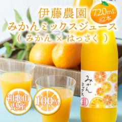 伊藤農園 みかんミックスジュース 720mL×2本 果汁100% 国産 果汁ジュース