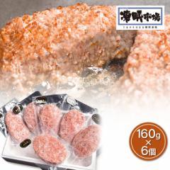 肉 凍眠市場 山形牛 ハンバーグ 160g×6個 冷凍