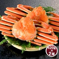 かに カニ 蟹 ボイル ズワイガニ 姿 420g×2尾 冷凍 ずわいがに ずわい蟹