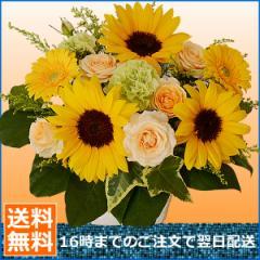 【誕生日】【花】【デザイナーズオーダーフラワー】おまかせフラワー3500円コース 女性【送料無料】【翌日配送】
