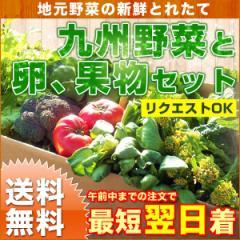 九州野菜と卵、果物セット 新鮮野菜10品以上と卵10個、旬の果物付き クール便 送料無料