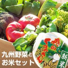 【送料無料】 九州野菜と森のくまさん米セット