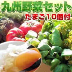 九州野菜とたまごセット 九州野菜10品以上と卵10個入 九州産 クール便 送料無料