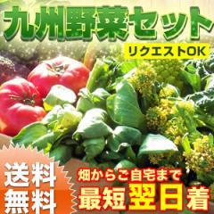 【送料無料】野菜セット 九州野菜10品以上 野菜詰め合わせ おまかせ野菜セット
