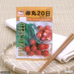 野菜の種 赤丸20日大根 レッド・サン 品番:1513 家庭菜園
