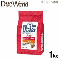 セレクトバランス パピー チキン 小粒 子犬・母犬用 ドライ 1kg