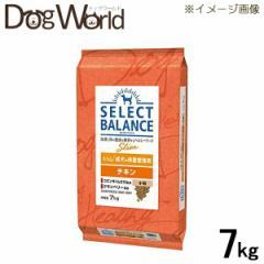 セレクトバランス スリム チキン 小粒 成犬の体重管理 ドライ 7kg