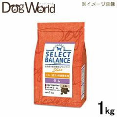 セレクトバランス スリム ラム 小粒 成犬の体重管理 ドライ 1kg