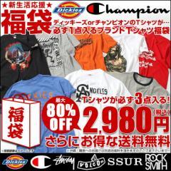 【送料無料】 DickiesかChampionのTシャツが必ず1点入るTシャツ福袋 [返品・交換・キャンセルは不可]