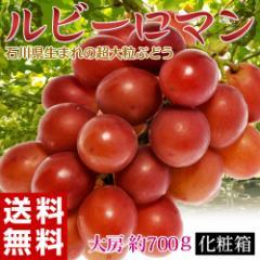 ぶどう 送料無料 石川県産 超大粒ぶどう「ルビーロマン」 約700g 化粧箱 葡萄(ブドウ) 冷蔵 のしOK