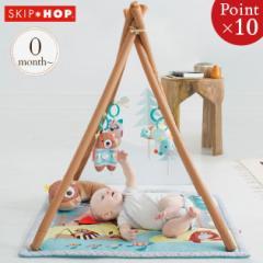 【送料無料】SKIPHOP(スキップホップ) キャンピングカブ・アクティビティジム TYSH307900 SKIP HOP プレイジム 赤ちゃん マット ベビー