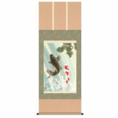 掛軸 [端午の節句] 【夫婦滝昇鯉】 唐沢碧山 尺五 [H30F6-261]【代引き不可】