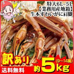 【業務用産地箱】特大6L〜5L生本ずわいがに肩...