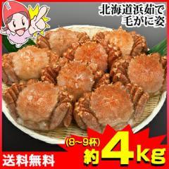 北海道浜茹で毛がに姿 約4kg(8〜9杯)【送料無料】...