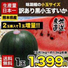 【送料無料】すいかの本場 熊本産 訳あり黒小玉す...