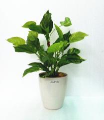 ●代引き不可【wgd-10】 送料無料 ポトス 人工観葉植物 造花