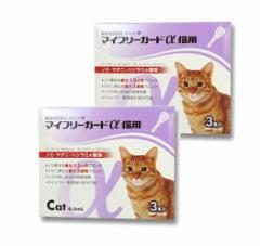【動物用医薬品】マイフリーガードα猫用 3本入 2箱セット