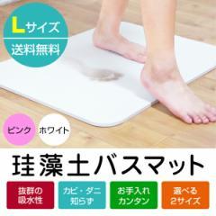 【ワケアリ特価】珪藻土バスマット Lサイズ【送料無料】