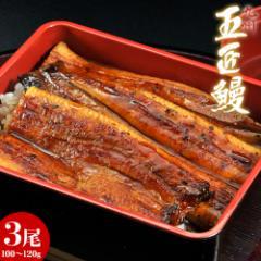 丑の日 うなぎ 鹿児島産 うなぎ蒲焼「五匠鰻」 約100〜120g×3尾 冷凍 送料無料