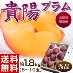 プラム ギフト 山梨県産 高級プラム 貴陽(きよう) 秀品 8〜10玉 約1.8kg 化粧箱 冷蔵 送料無料  のしOK