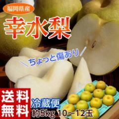 梨 なし ナシ 送料無料 福岡 幸水梨 約5キロ 大玉(10〜12玉)※冷蔵