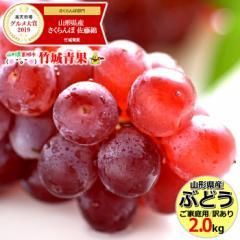 【出荷中/送料無料】山形県産 ご家庭用 ブドウ デラウェア 2kg(8房〜16房) 訳あり ぶどう ブドウ 葡萄 果物 フルーツ お取り寄せ