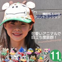 帽子 キッズ キャップ 子供用 CAP サイズ調節 男の子 女の子 春夏 アニマル 耳付き / キッズ アニマルフェイスメッシュキャップ