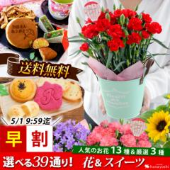 早割 母の日 花とセット 母の日 ギフト 花 送料無料 組合せ39通り 13種類から選べるお花と3種類から選べるスイーツのセット 鉢植え プレ