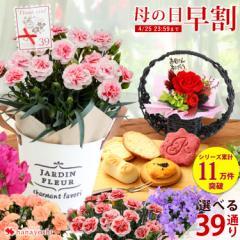 早割 母の日 花とセット 母の日ギフト 花 送料無料 組合せ39通り 13種類から選べるお花と3種類から選べるスイーツのセット プレゼント ギ