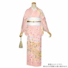 訪問着 お仕立て上がり 正絹着物単品「ピンク 松川菱と花模様 宝尽くし 雲取文様 吉祥文様」
